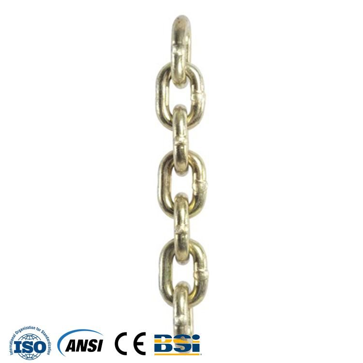 China best quality low sales price for Conveyor Roller Engineering Chain with ISO certified Factory Manufacturer and Supplier -from Pto-shaft.com
