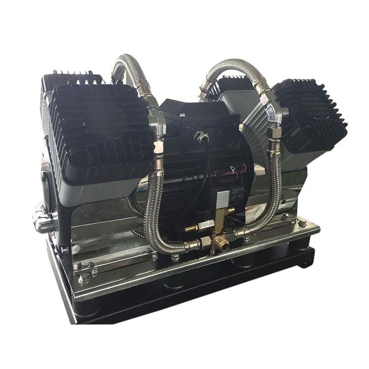 Best China manufacturer & factory Piston Type   scroll type   water lubricate type of  Oil-free Air Compressor With high quality best price