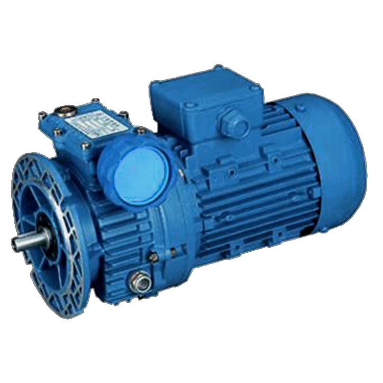 China best quality low sales price for small variable speed electric motor Factory Manufacturer and Supplier -from Pto-shaft.com